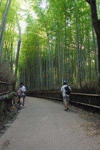 Japan 2012 164