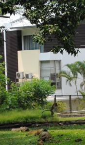 Singapore - Sept 2012 035