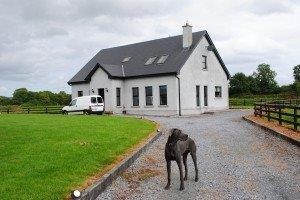 Ireland housesitting 034