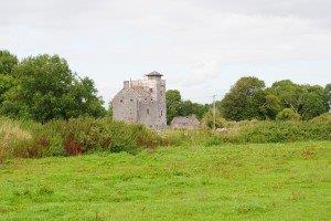 Ireland housesitting 035