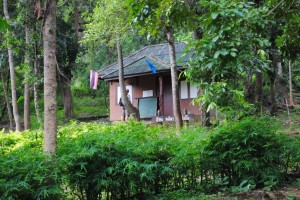 Chiang Mai 004