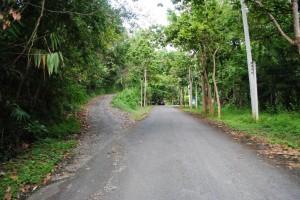 Chiang Mai 005