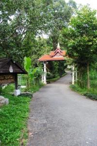 Chiang Mai 059