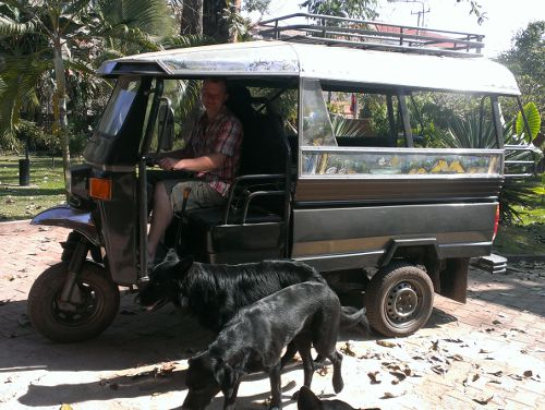 Barry_TukTuk_Dogs_Vientiane