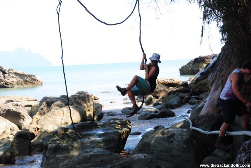 Borneo 985