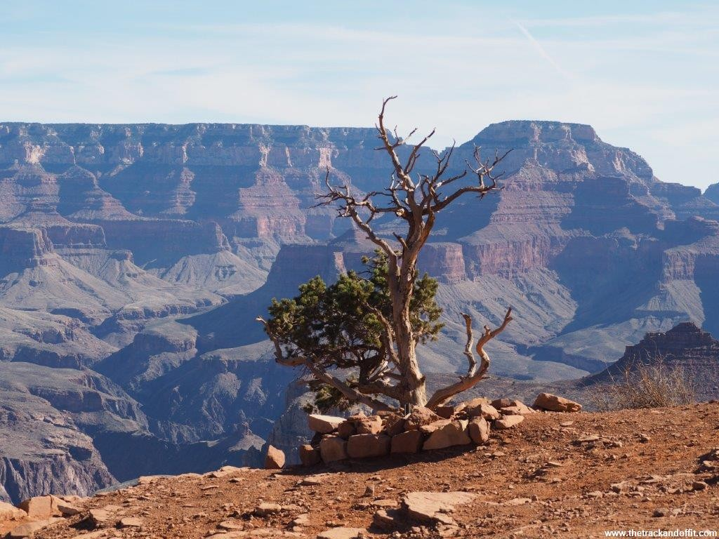 Grand Canyon 079